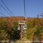 秋の那須、ロープウェイと吊橋のおススメ紅葉スポット
