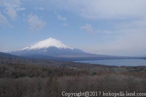 パノラマ台 富士山