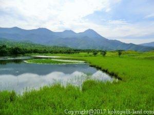 知床五湖(湖)