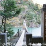 寸又峡・接岨峡と日本平・三保の松原を巡る車中泊の旅