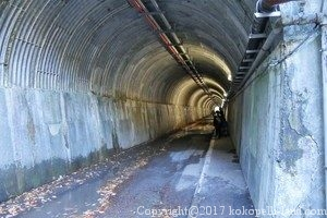 寸又峡天子トンネル