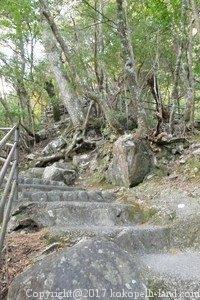 寸又峡階段