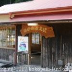接岨峡温泉駅から湖に浮かぶ奥大井湖上駅、アプト式機関車を観る車中泊の旅
