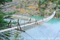 夢の吊橋1