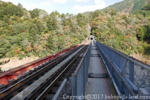 奥大井湖上駅遊歩道1