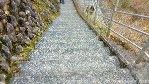 夢の吊橋下り階段2