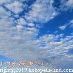 軽井沢立ち寄りおすすめスポット・老舗の温泉&グルメ&土産|所さんお届けモノです