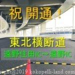 【東北横断道開通】遠野住田IC~遠野IC・周辺の道の駅とRVパーク
