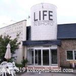 北海道車中泊スポット|RVパーク「LIFE IN BIHORO」