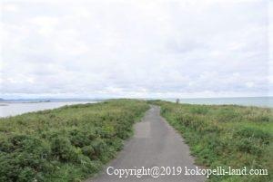 サロマ湖サイクリング3