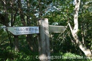 釧路湿原サルルン展望台